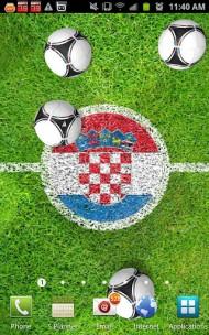 adidas EURO 2012 LiveWallpaper