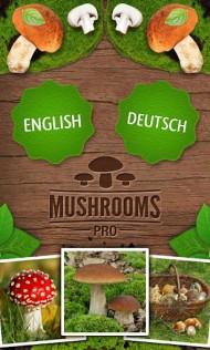 Mushrooms PRO