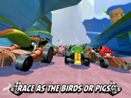 Angry Birds Go4