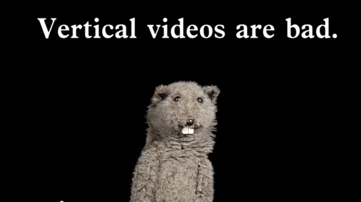 vertikalni video