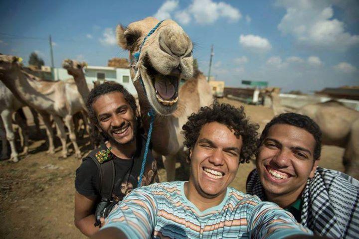 velbloudi selfie
