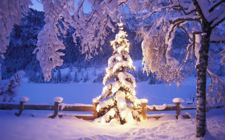 TOP 10 nejstahovanějších vánočních pozadí